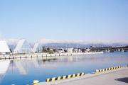 H24 4月28日 根っこランドの建物と立山連峰 「魚津の海の駅より望む」 スポット写真